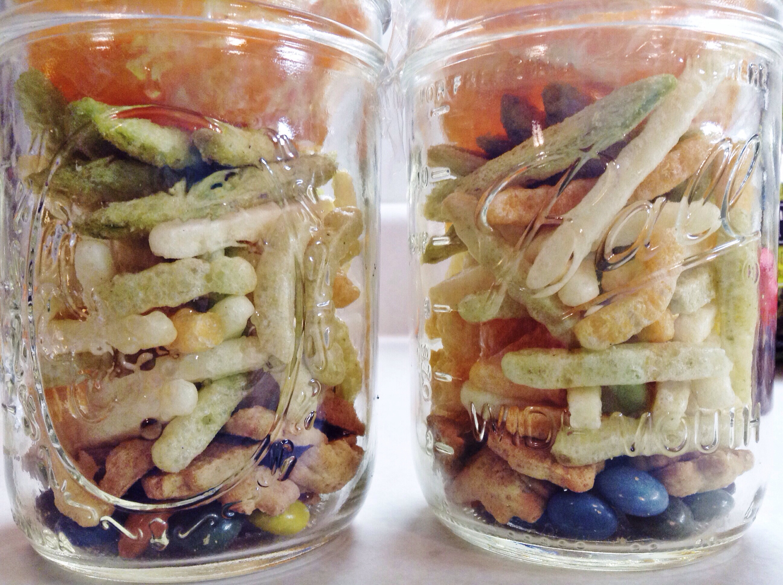 Food on the Go…Snack Jars