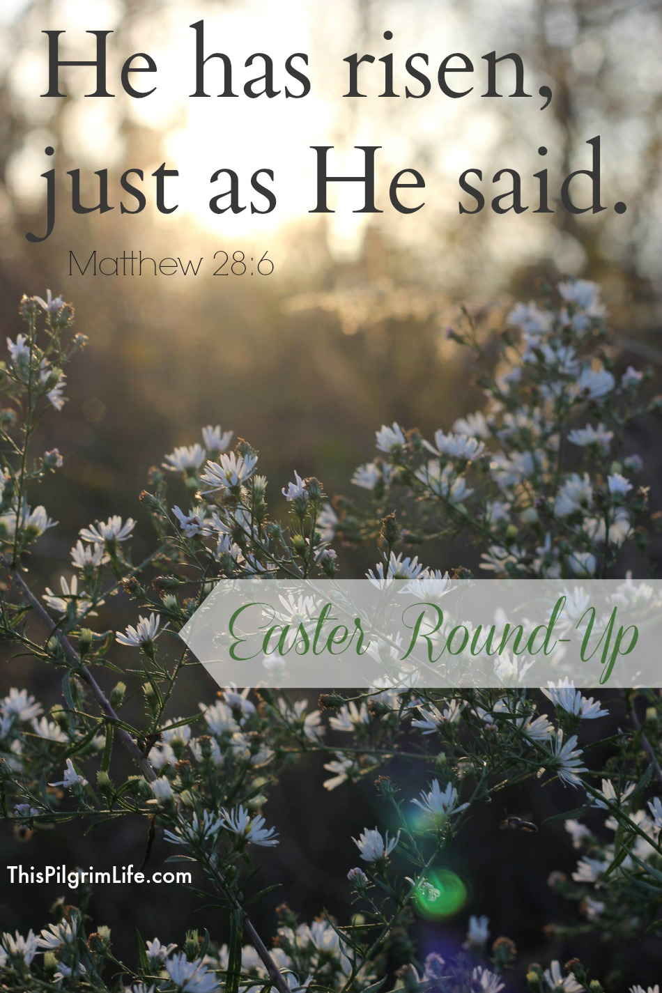 Easter Round-Up