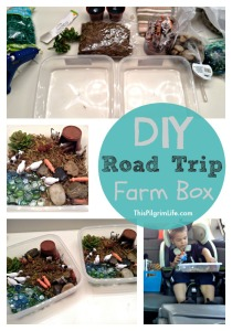 DIY Road Trip Farm Box
