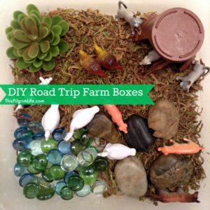 DIY Road Trip Farm Box