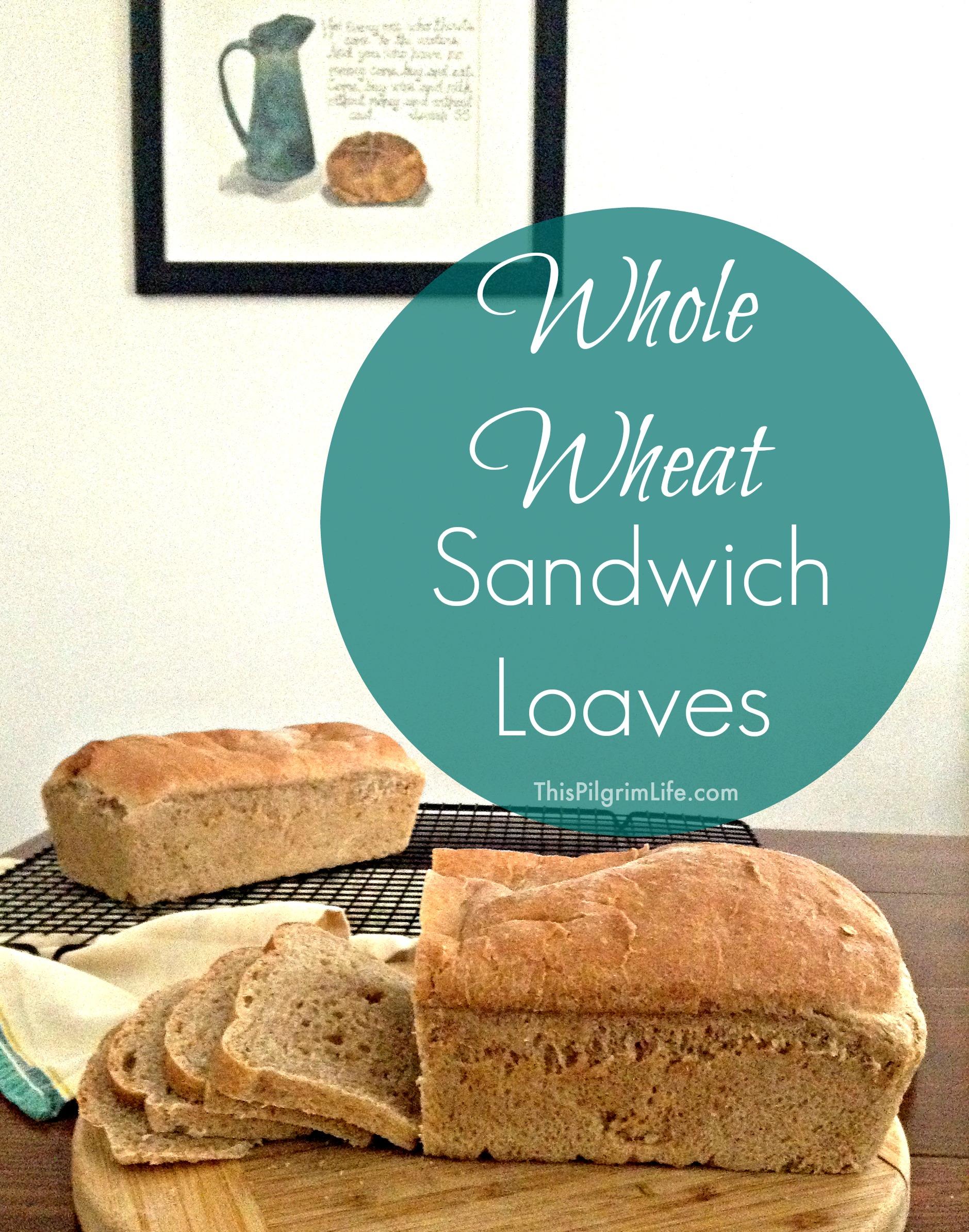 Whole Wheat Sandwich Loaves - This Pilgrim Life