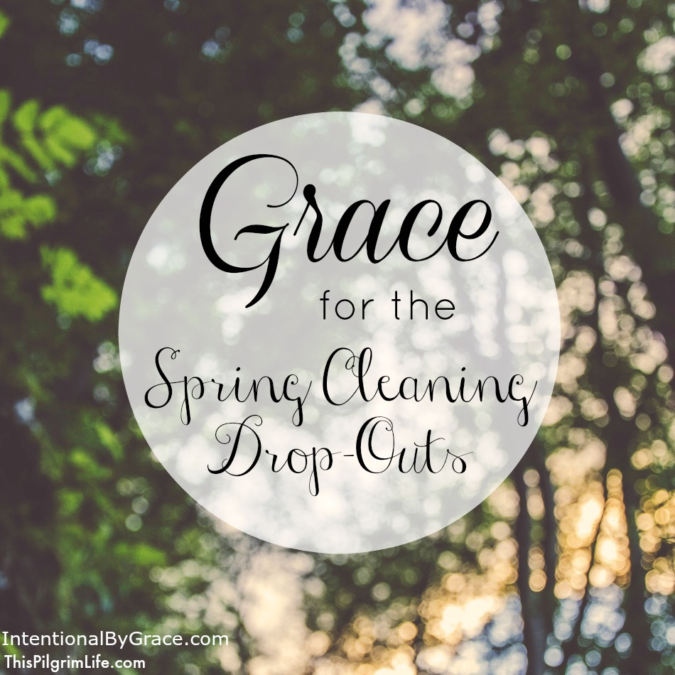 Grace for the Spring Cleaning Drop-Outs