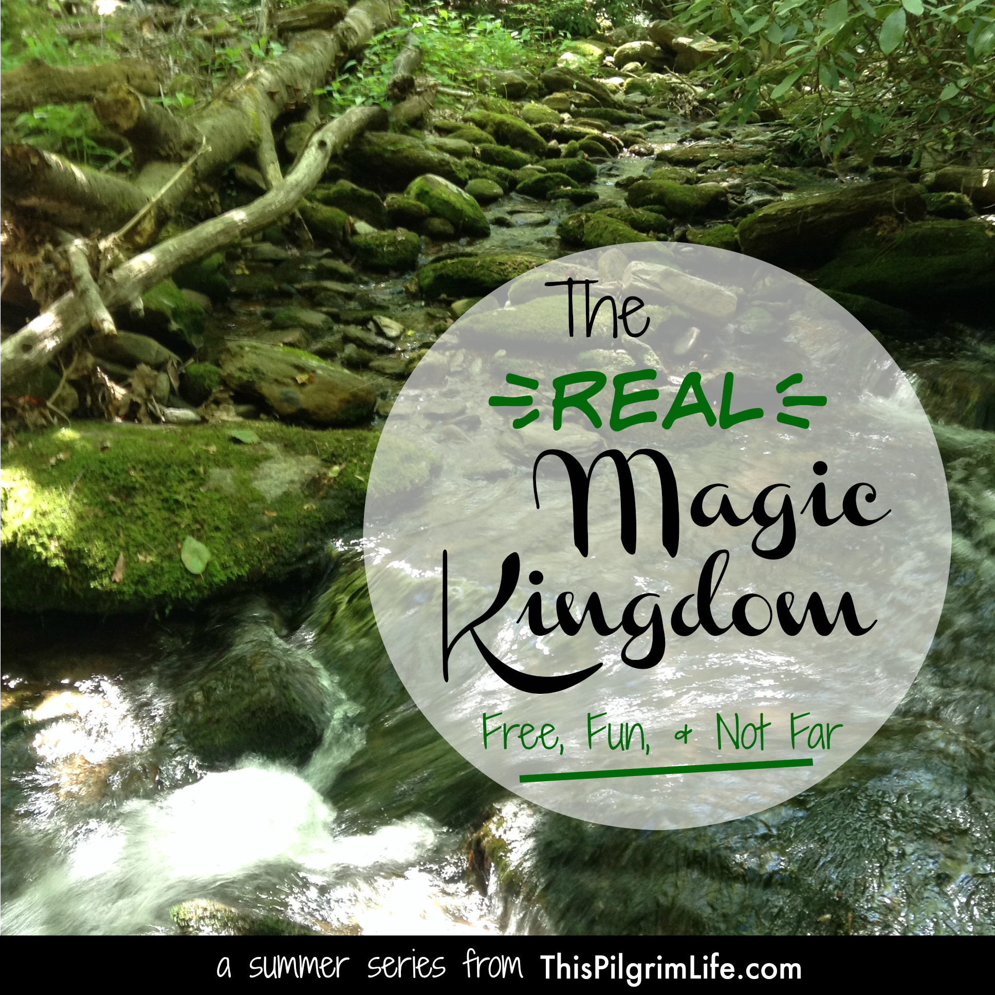 The {Real} Magic Kingdom- Free, Fun, and Not Far.