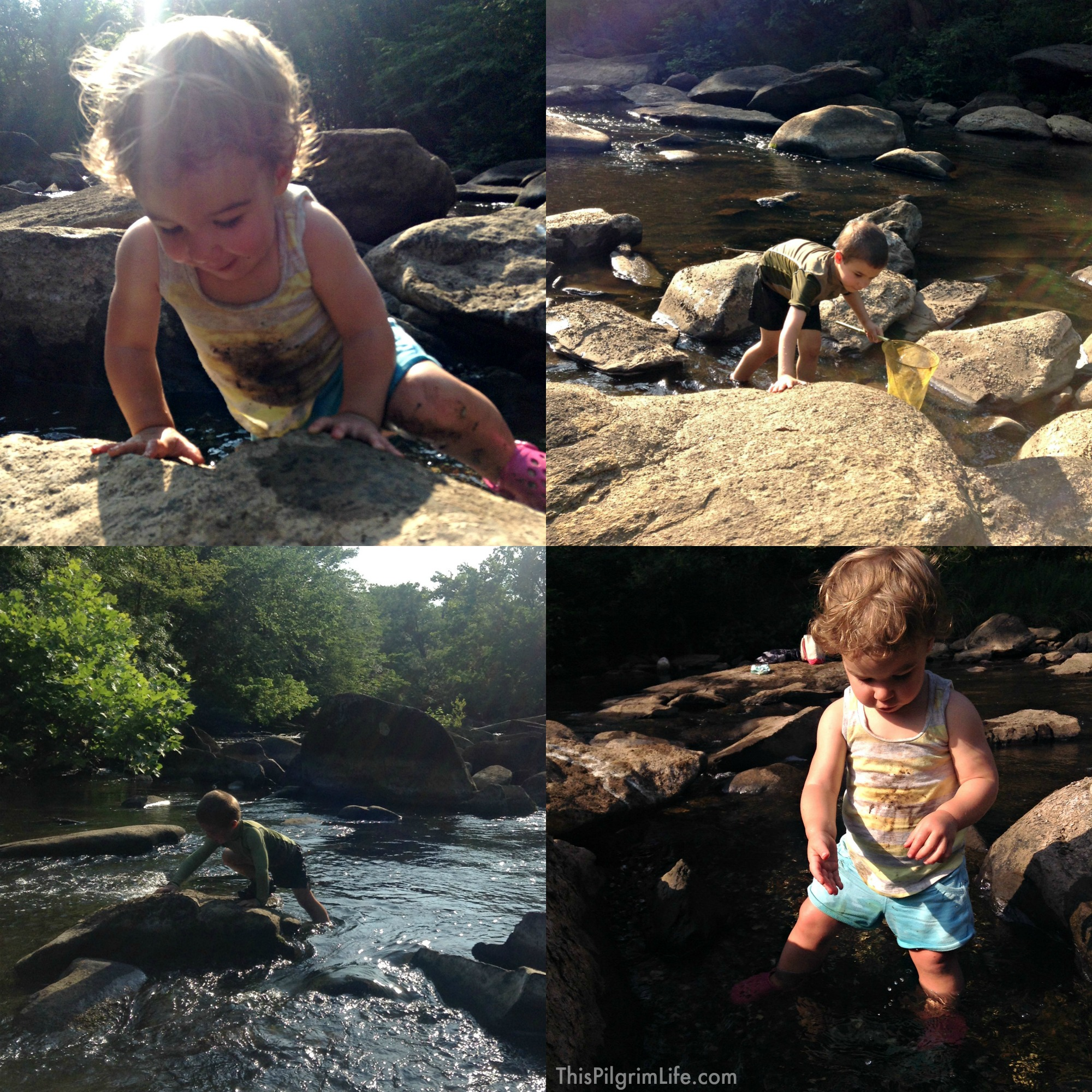 3 Reasons to Explore Wild Water with Kids & Tips to Keep Everyone Safe and Having Fun