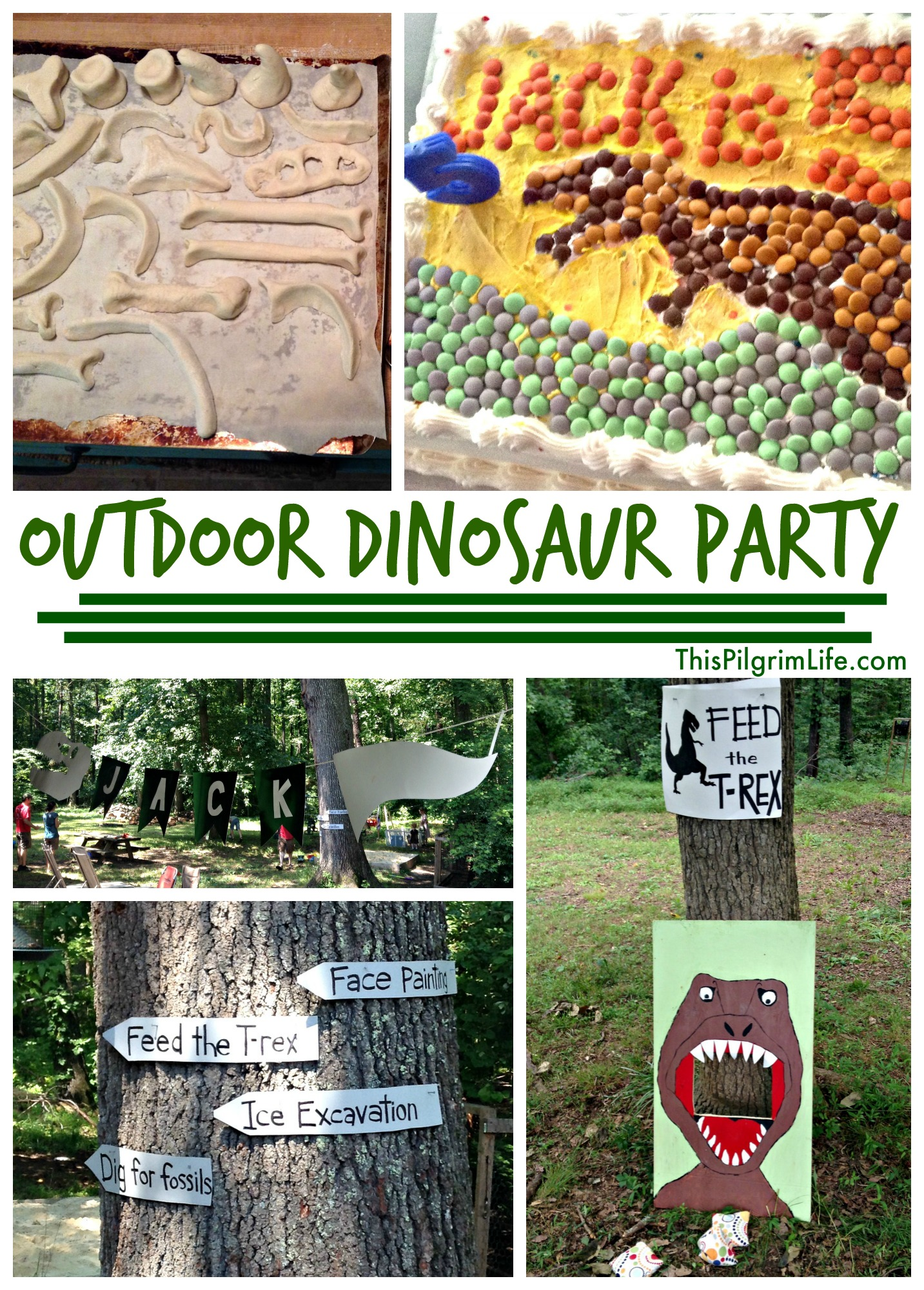 Outdoor Dinosaur Birthday Party This Pilgrim Life