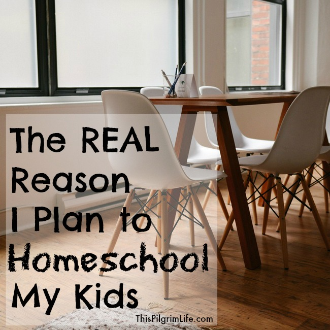 The REAL reason I plan to homeschool my kids.