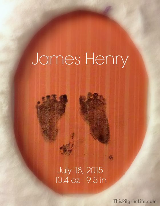 God Moves In A Mysterious Way-- The Life of Our Son, James Henry