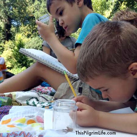 Have More Joy, Sanity & Time with The Ultimate Homeschool Organization eCourse