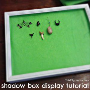Shadow Box Display Tutorial 9