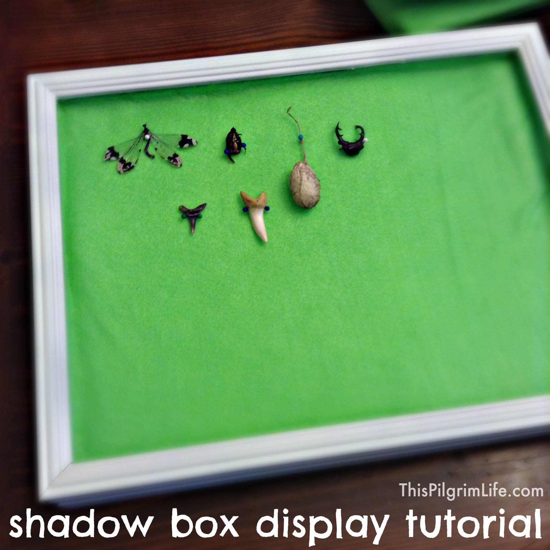 Shadow Box Display Tutorial - This Pilgrim Life