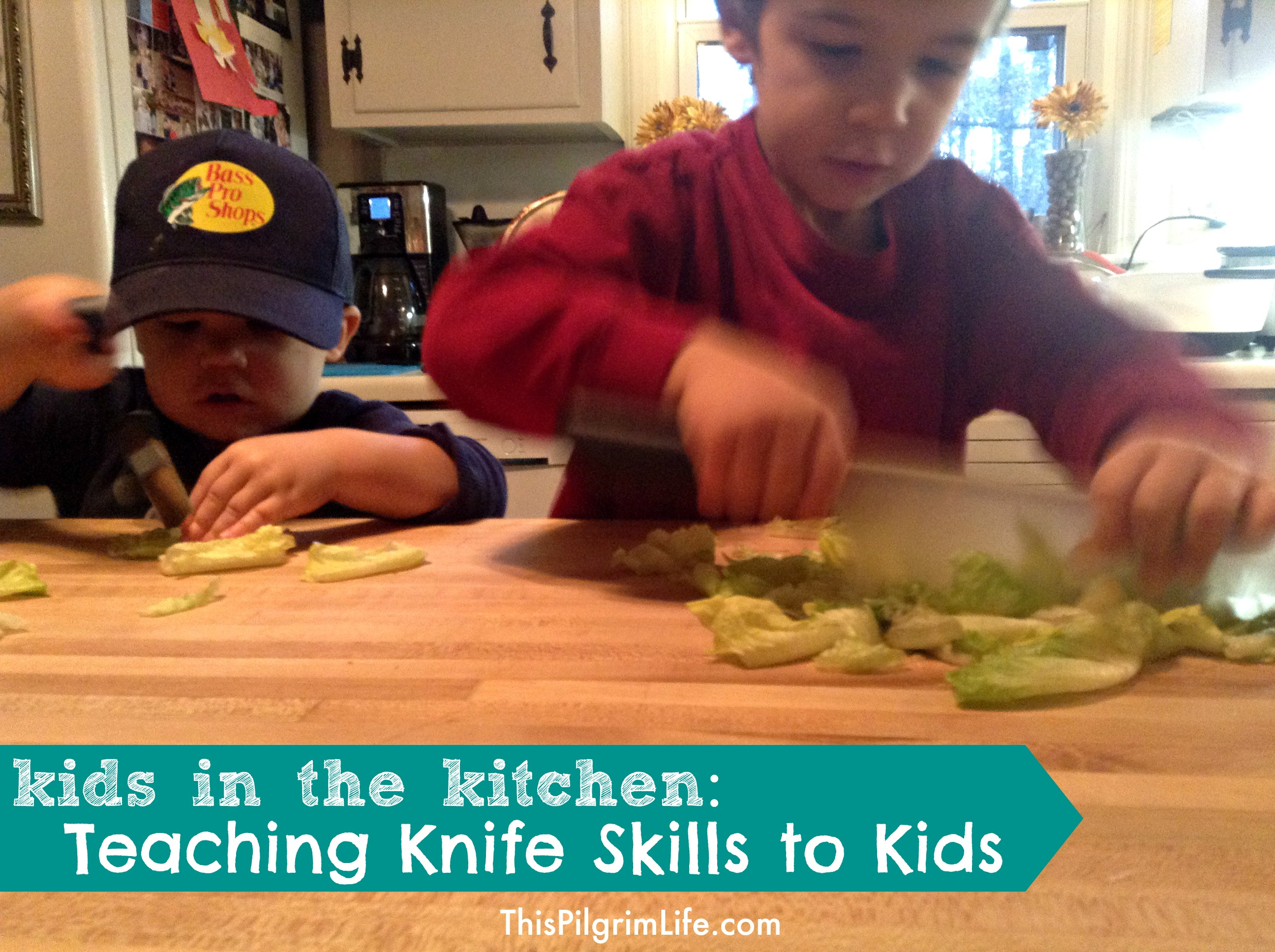Even toddlers can safely participate in cutting food in the kitchen. Check out these tips for teaching knife skills to children of all ages. Plus, find ideas and links for age-appropriate cutting tools .