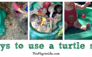 Five Ways to Use A Turtle Sandbox