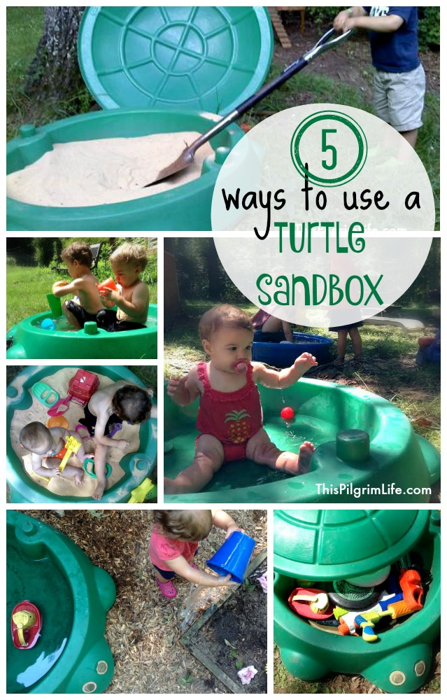 Five Ways to Use A Turtle Sandbox