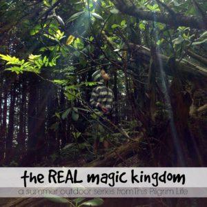 Real Magic Kingdom