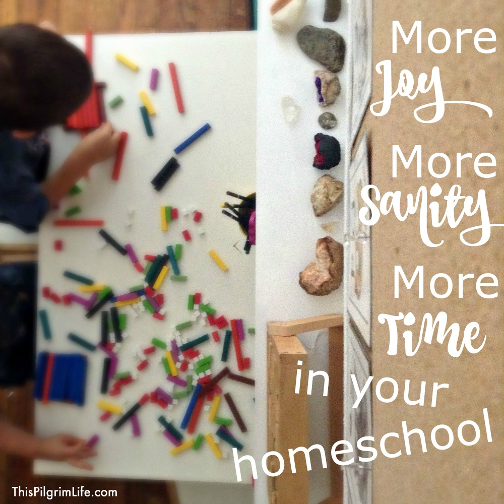 Every homeschool mom could use a little more joy, sanity, and time! Check out this amazing resource that gives tips, plans, and encouragements for a more joy-filled and successful homeschool!