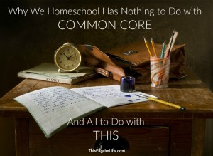 We homeschool our kids, but it's not because we want to avoid Common Core. Nope. We have much better reasons than that.