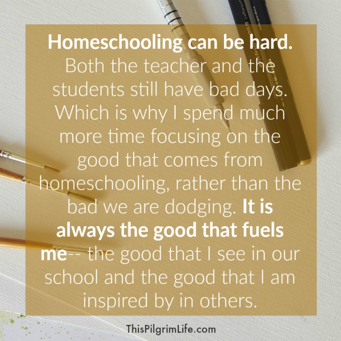 Why We Homeschool Has Nothing to Do with Common Core and All to Do ...