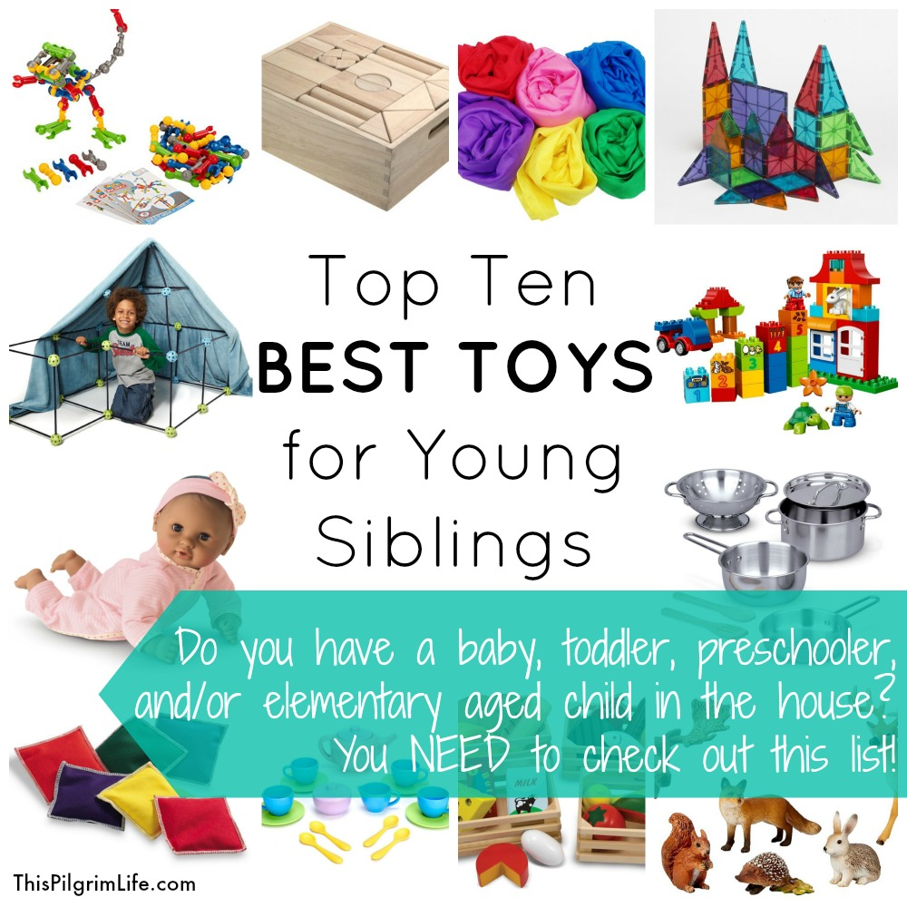 Check out this list of the top ten best toys for young children to play with-- from babies to elementary age!