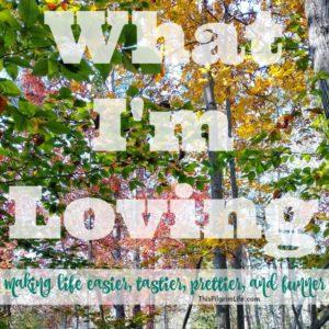 what-im-loving-edition6-9