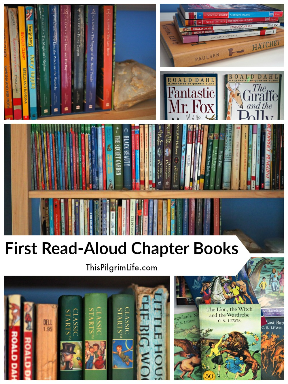 The BEST books to start a habit of reading aloud to young kids!
