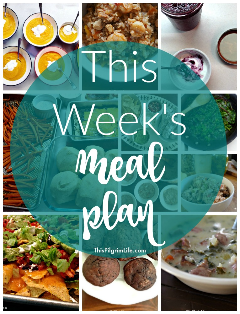 I am out of a ton of my normal kitchen staples, but this is our meal plan for the week using only what we have on hand!