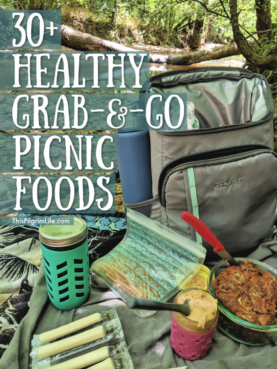 30 Healthy Grab And Go Picnic Foods This Pilgrim Life