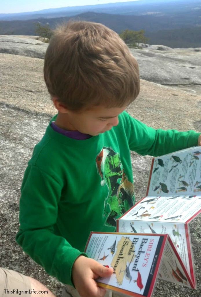 Kids NEED time outdoor to play and explore! Here are seven EASY ways we can cultivate wonder in their lives (and ours too!).