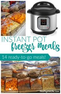 IP Freezer Meals11