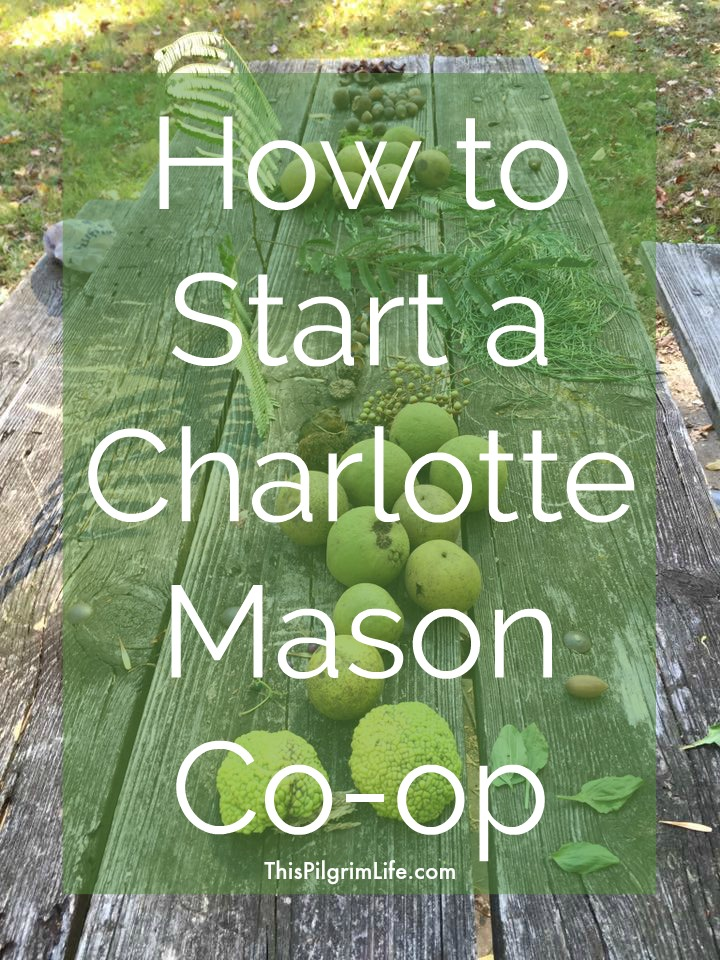 Love homeschooling according to Charlotte Mason's principles, but desire more community? Start a Charlotte Mason co-op in your area and gain camaraderie and support for your homeschooling journey!