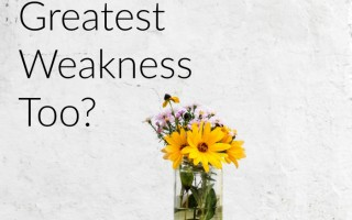 Christian Mother, Is This Your Greatest Weakness Too?