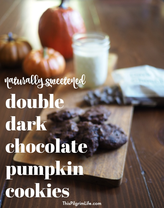 (Naturally Sweetened) Double Dark Chocolate Pumpkin Cookies