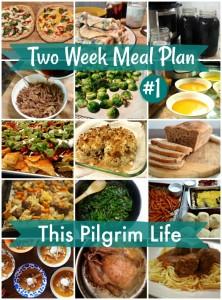 Two Week Meal Plan