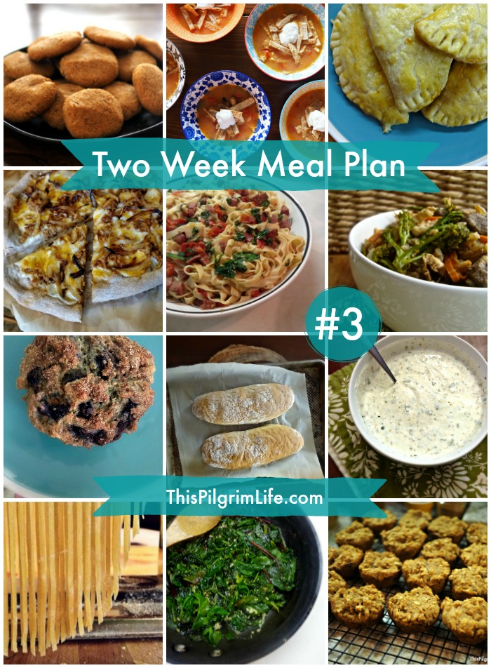 Two Week Meal Plan #3