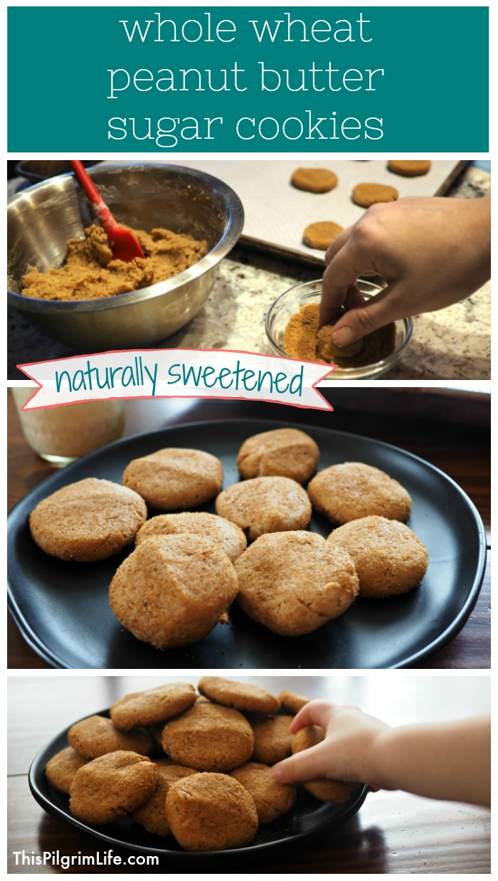 Bake a batch of naturally sweetened whole wheat peanut butter sugar cookies for a great sweet treat or snack you can feel good about!