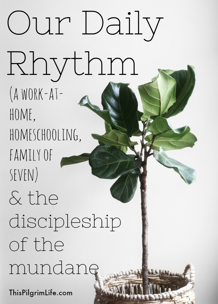 Our Daily Rhythm & The Discipleship of Mundane