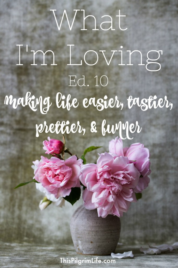 Learning to see the good in the everyday is CRUCIAL for a joy-filled life! I love reflecting on what I'm loving-- and love sharing it with you! So check out what is currently making our lives easier, tastier, prettier, and funner!