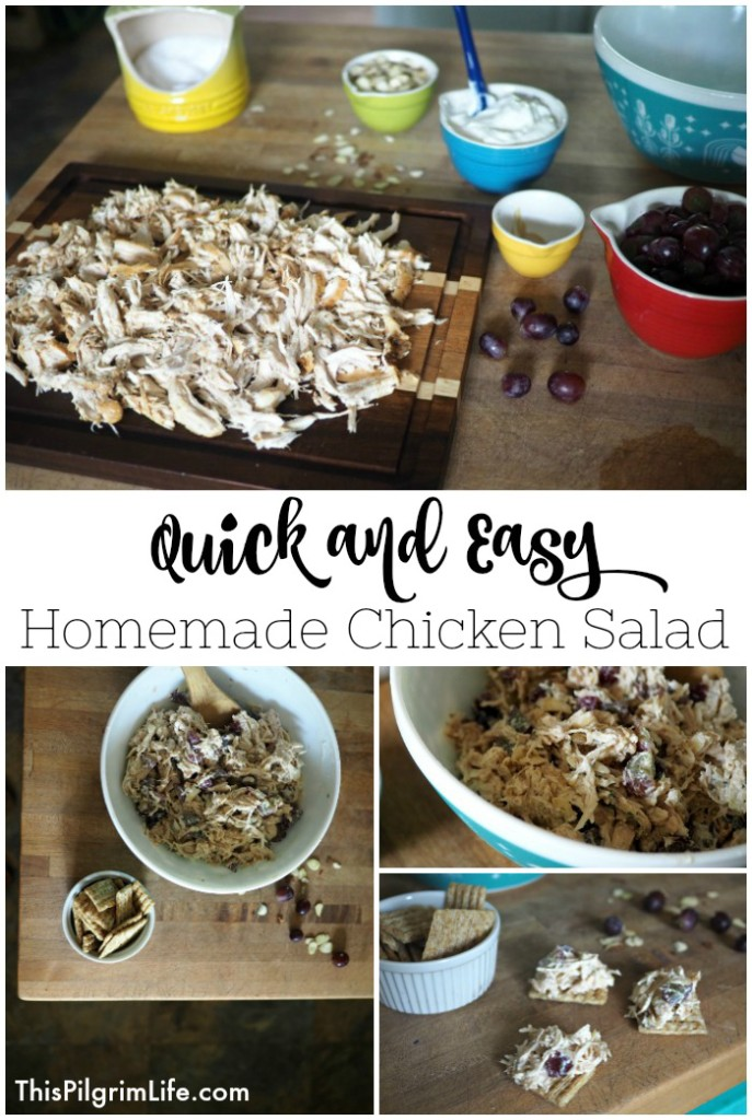 This homemade chicken salad is SO EASY to make and is very kid friendly too. We love to make a quick batch and take it along on picnics and road trips!