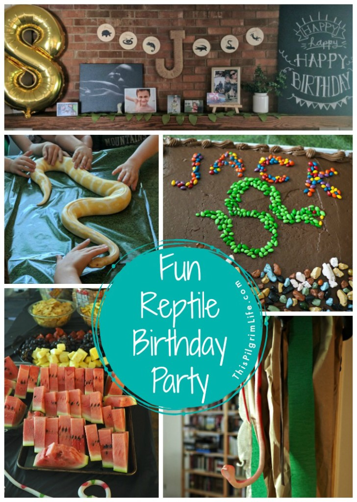 Reptile fans will love this fun reptile birthday party! A cool DIY snake cake, a reptile obstacle course that led to a den of (stuffed snakes), and a hands-on snake and lizard experience were a few of the highlights from the party.