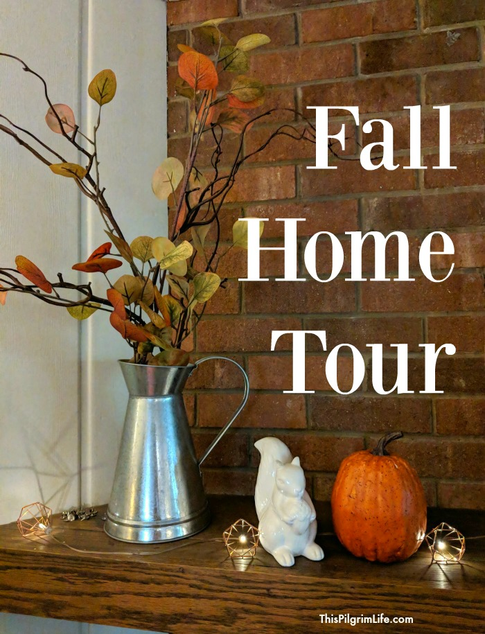 I love the coziness that a little Fall decor brings, but still need simplicity and a kid-friendly pieces. Here is how I decorated our home for Fall on a budget.