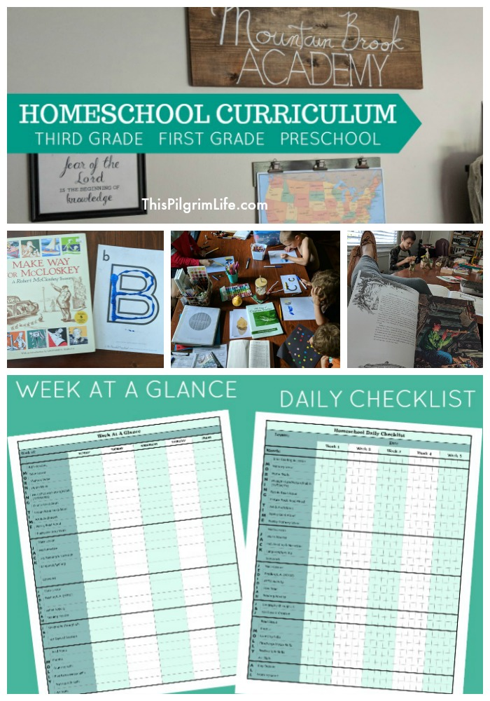 We are a homeschooling family with five kids eight and under! See what we are using this year for homeschool curriculum in third grade, first grade, and preschool. Plus, get free printables to help you keep your homeschool days organized and on track!
