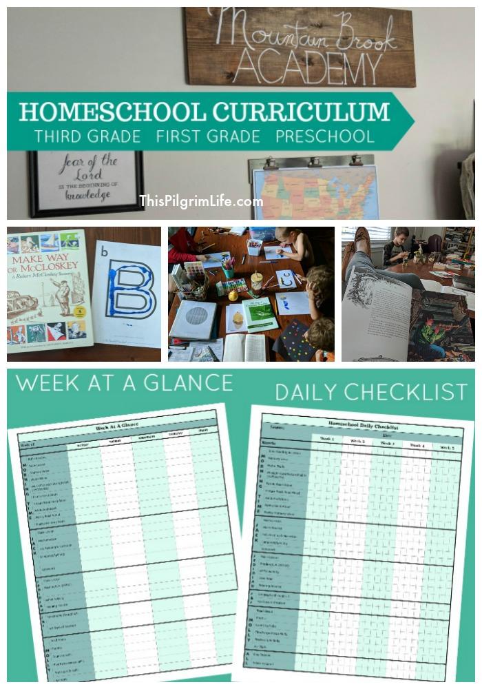 Our Homeschool Curriculum Choices for Third Grade, First Grade, & Preschool