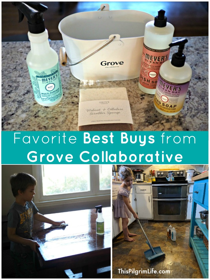 I have been a Grove Collaborative shopper for years. I love how much time and money I save by ordering from Grove each month. Keep reading to see a list of my favorite best buys from Grove, as well as how you can get several of them for FREE!