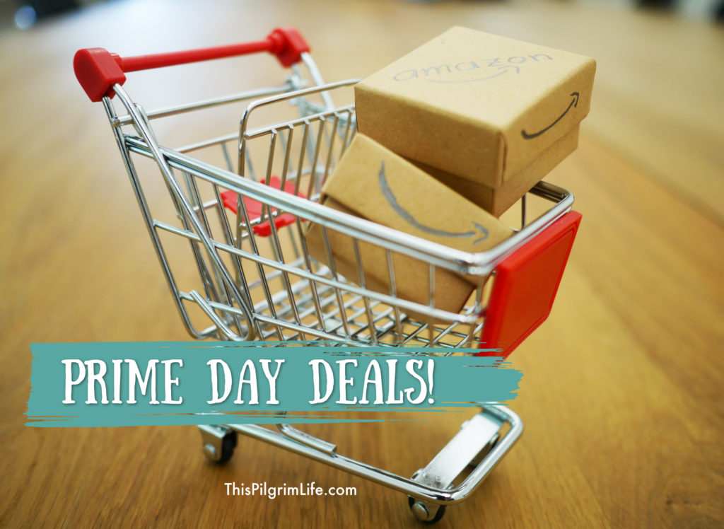 Here are some of the best kitchen and family deals on Amazon's Prime Day!
