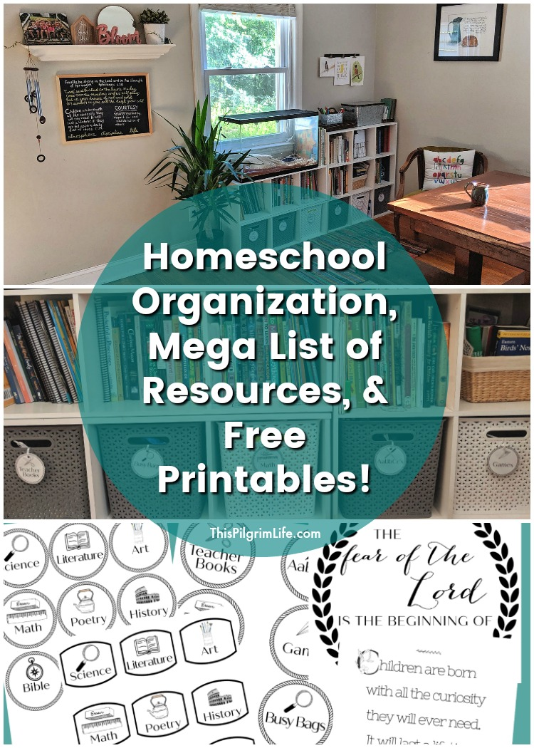 This is our current homeschool organization in our dining room. We have five kids and an average sized house, but everything is still neat, tidy, and inviting! Plus, check out a mega list of our favorite homeschool resources, and get a few free printables for your homeschool space!