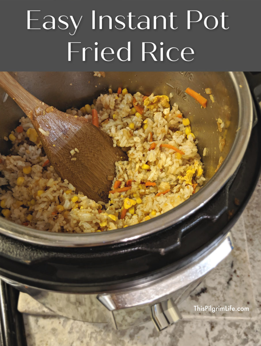 A simple recipe for easy Instant Pot fried rice! Perfect as a quick side dish or add protein for a quick meal!