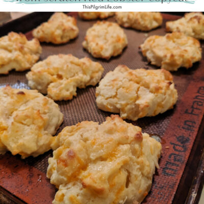 Cheddar Garlic Biscuits || Red Lobster Copycat Recipe