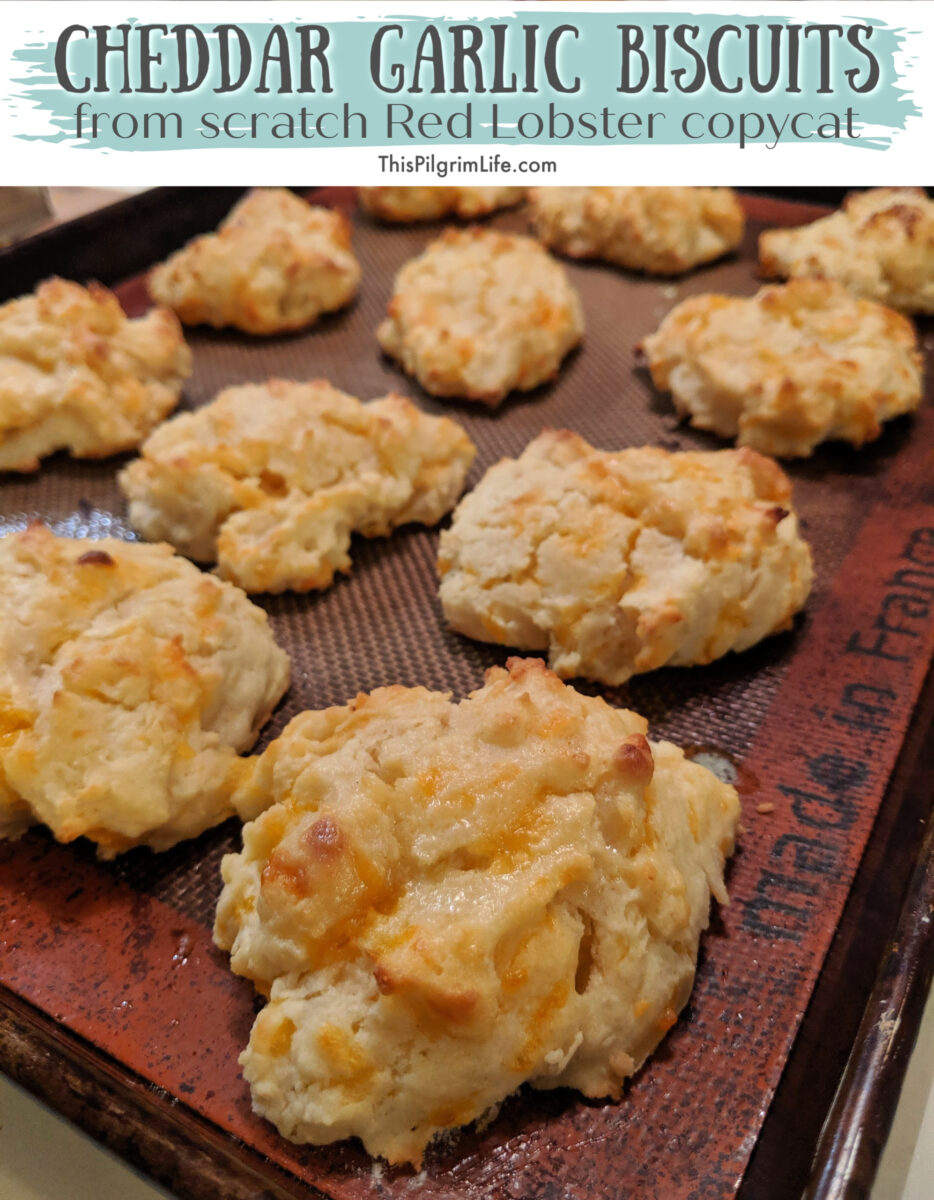 Cheddar garlic drop biscuits are so simple to make from scratch and taste just like the Red Lobster biscuits! I love serving these biscuits with our meal when we want bread but do not have time for one-hour French bread or focaccia.