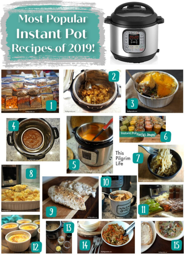 Instant Pots were put to use a ton in 2019! Here are fifteen of the most popular Instant Pot recipes from the blog this year, plus five bonus recipes that you won't want to miss!