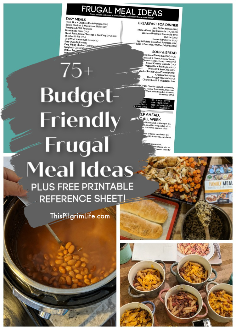 We all need meal ideas that aren't going to break the budget, because even though my 9yo would approve, we can't eat steak every night! This list is full of over 75 frugal meal ideas-- meals with meat, meals without meat, meals with beans, delicious breakfast-for-dinner ideas, and so much more!