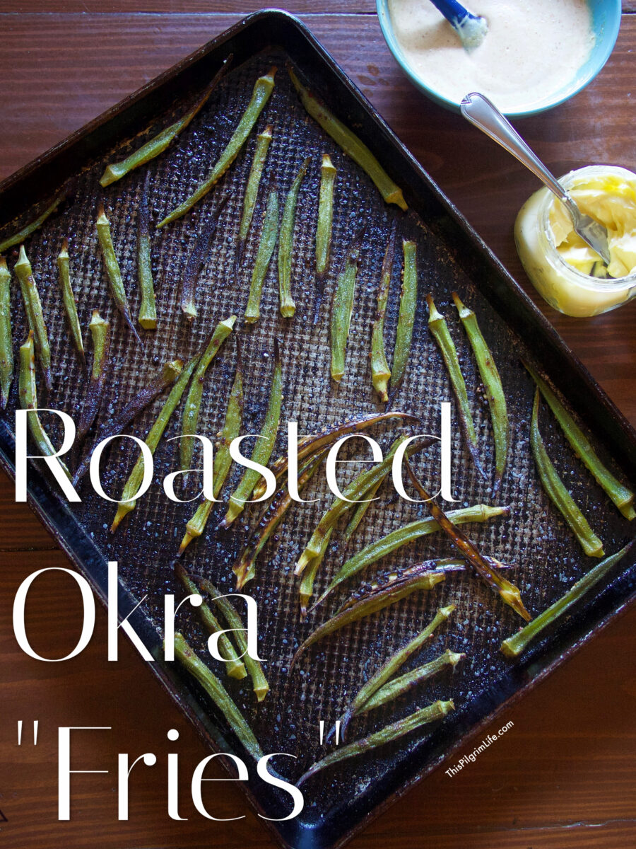 These okra fries are unbelievably delicious and so easy to prepare! They make a great finger food appetizer, or a healthy side dish that the whole family will enjoy.